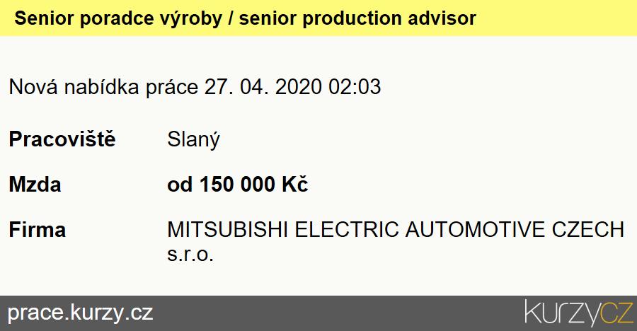 Senior poradce výroby / senior production advisor, Ekonomičtí a finanční náměstci (ředitelé)